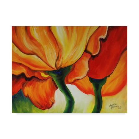 - Trademark Fine Art 'Golden Poppy Abstract' Canvas Art by Marcia Baldwin