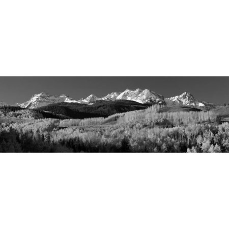 Usa, Colorado, Rocky Mountains, Aspens, Autumn Print Wall Art By Panoramic Images