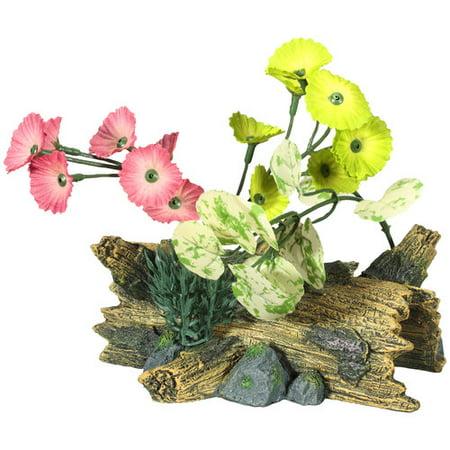 Aqua Culture Medium Drift Wood Aquarium Ornament, Assorted Item May Vary