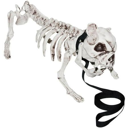 Skeleton Dog](Plastic Halloween Dog Skeleton)
