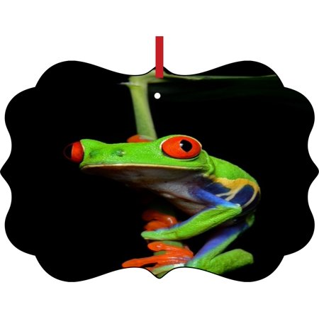 Climbing Red Eyed Tree Frog Elegant Aluminum Semigloss Christmas Ornament Tree Decoration - Unique Modern Novelty Tree Décor Favors Red Tree Frog
