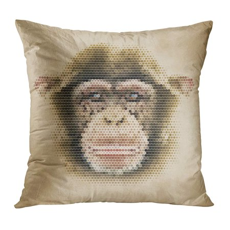 ECCOT Colorful Monkey Portrait Made of Geometrical Shapes Vintage Chimpanzee Face Retro Geometric Life Pillow Case Pillow Cover 16x16 inch](Geometric Portrait)