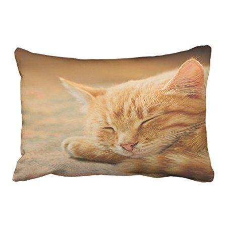 WinHome Decorative Sleeping Orange Tabby Cat Customized Custom Throw Pillow Case Cushion Cover Pillowcase Pillow Cover Size 20x30 inches Two Side
