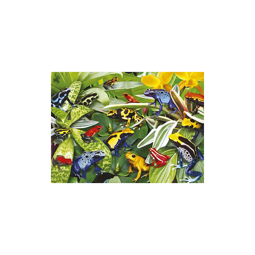 Friendly Frogs 300 Pc. Floor Puzzle by Ravensburger - 13018