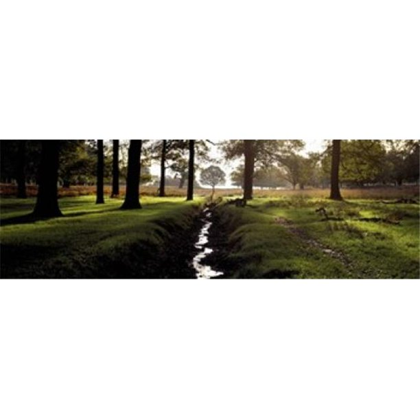 Panoramic Images Ppi101739l Stream Passing Through A Park Richmond Park London England Poster Print By Panoramic Images 36 X 12 Walmart Com Walmart Com
