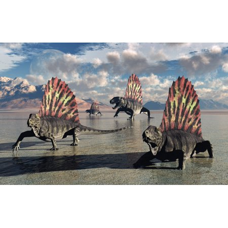 Sail Backed Dimetrodons Alive During Earths Permian Period Of Time Canvas Art   Mark Stevensonstocktrek Images  18 X 12