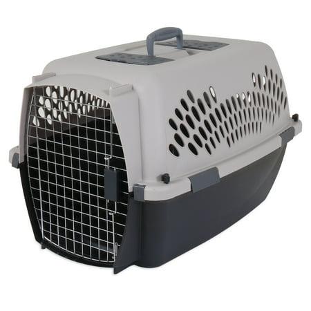 Petmate Cat Carrier (Dosckocil Pet Taxi 26