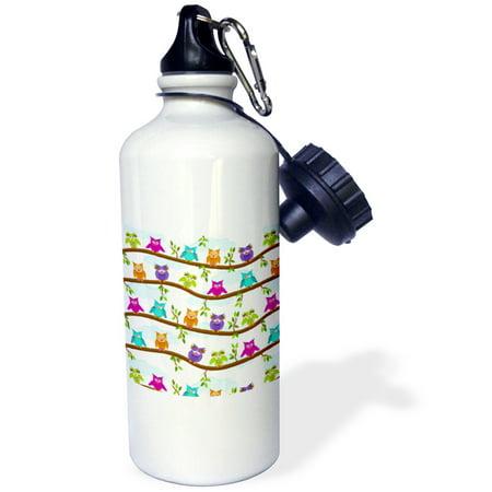 3dRose Funny Owls, Sports Water Bottle, 21oz
