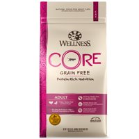 Wellness CORE Natural Grain Free Dry Cat Food, Turkey & Duck Recipe, 11-Pound Bag