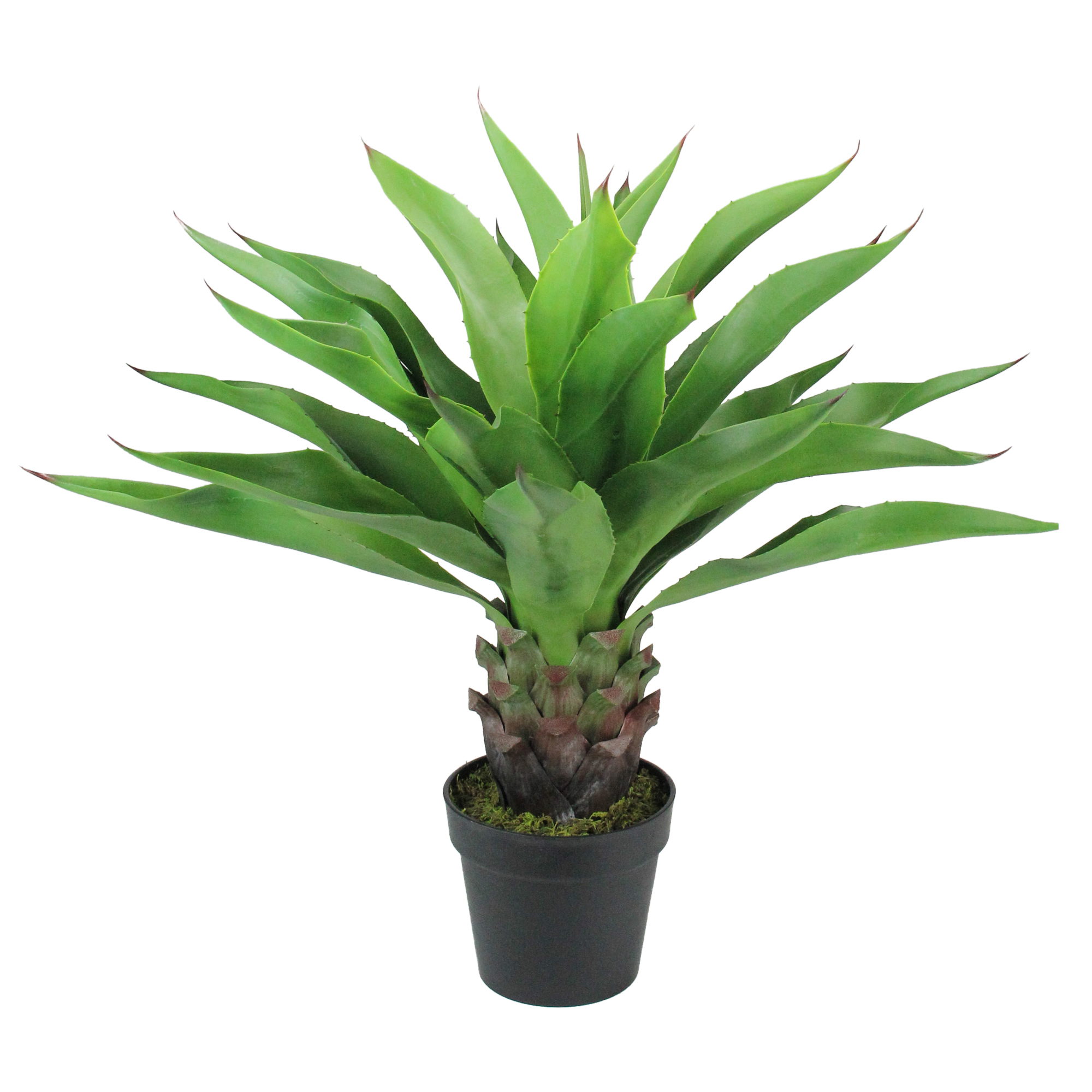"""30.5"""" Potted Green Artificial Agave Americana Succulent Plant"""