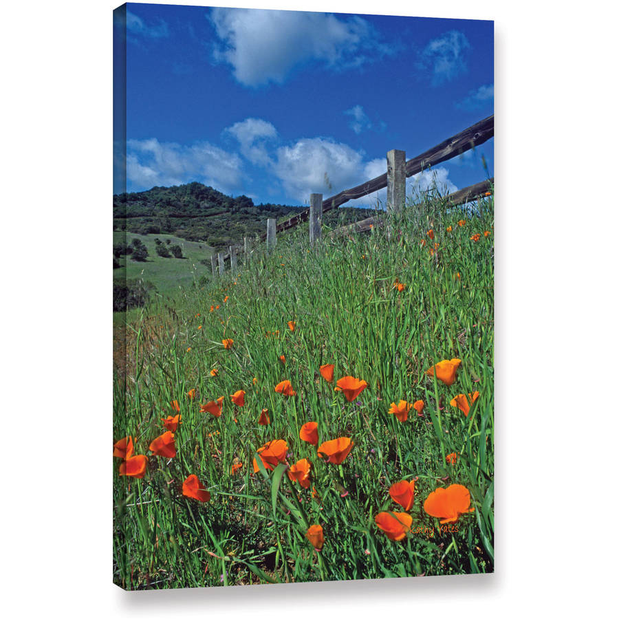 "Kathy Yates ""Poppies and the Fence"" Gallery-Wrapped Canvas"