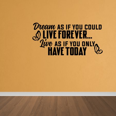 Wall Decal Quote Dream Live Girls Teen Bedroom Vinyl Wall Art Decal DP122