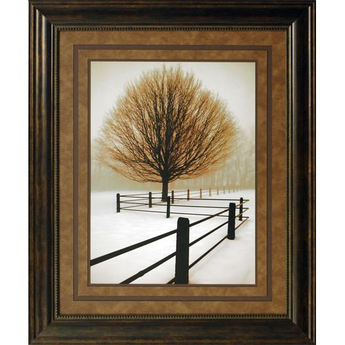North American Art Solitude Framed Photographic Print