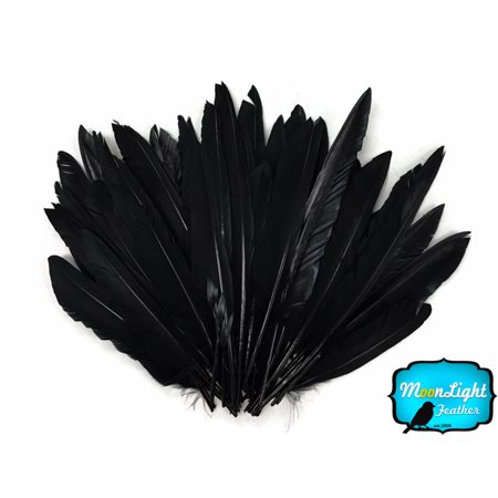 Wholesale Craft Suppliers (1/4 Lbs - Black Duck Pointer Primary Wing Wholesale Feathers)
