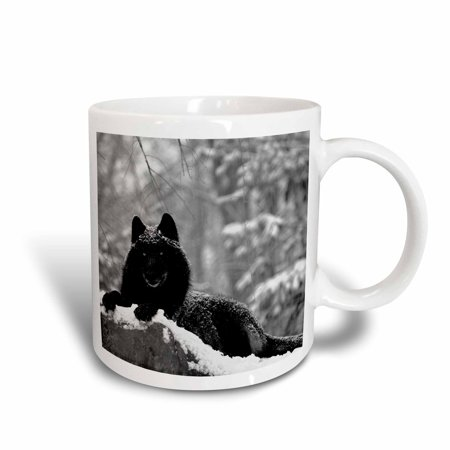 3dRose Rocky Mountain Wolf, Black White, Ceramic Mug, 11-ounce