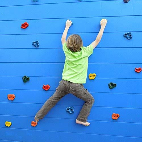 Details about  /20 Rock Wall Climbing Holds For Kids With 8.53 Foot Climbing Knotted Rope