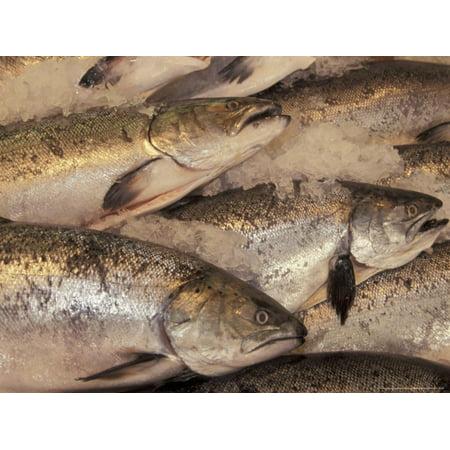 Fresh Fish at Pike Place Market, Seattle, Washington, USA Print Wall Art By John & Lisa Merrill (Fish Washington)