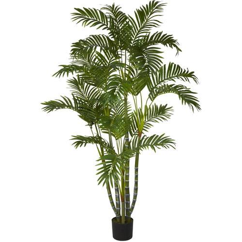 Areca Palm Silk Tree, 5'