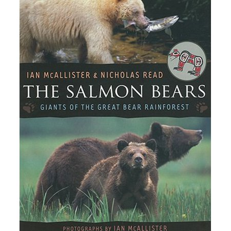 Pine Forest Bear (The Salmon Bears (Paperback))