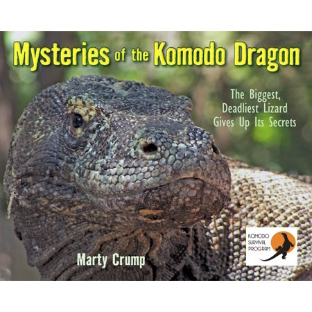 Mysteries of the Komodo Dragon : The Biggest, Deadliest Lizard Gives Up Its (The Biggest Komodo Dragon In The World)