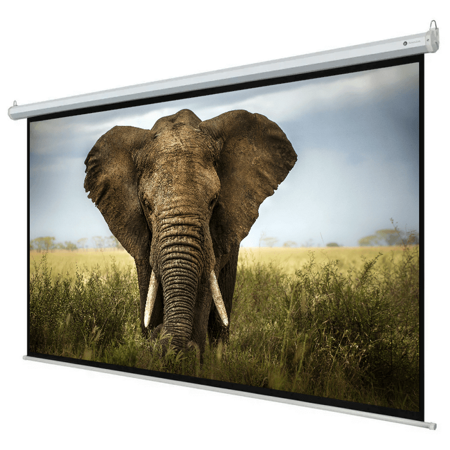Accuscreen Electric Screen - Homegear 110