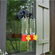 Red Carpet Studios LTD Double Window Hook Hummingbird Feeder