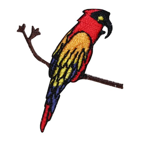 ID 1633 Parrot On Branch Patch Exotic Bird Pet Embroidered Iron On Applique ()