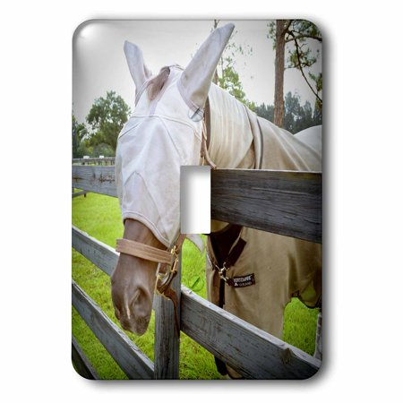 3dRose horse fly mask over fence , Double Toggle