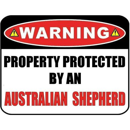 Australian Shepherd Terrier (Warning Property Protected by an Australian Shepherd 9 inch x 11.5 inch Laminated Dog Sign )