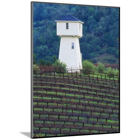 Silver Oak Cellars, Alexander Valley Wine Country, California Wood Mounted Print Wall Art By John Alves
