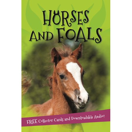 It's all about... Horses and Foals (Kingfisher Illustrated Horse)