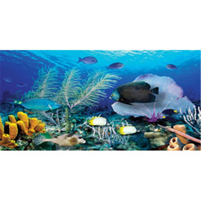 Biggies WM-ORF-54 Ocean Reef Wall Murals  - Each
