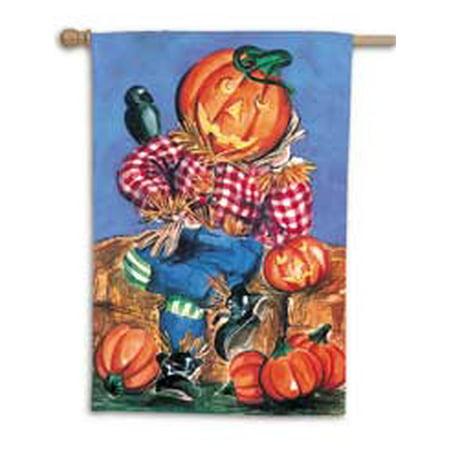 - Pumpkinhead Scarecrow Toland Art Banner