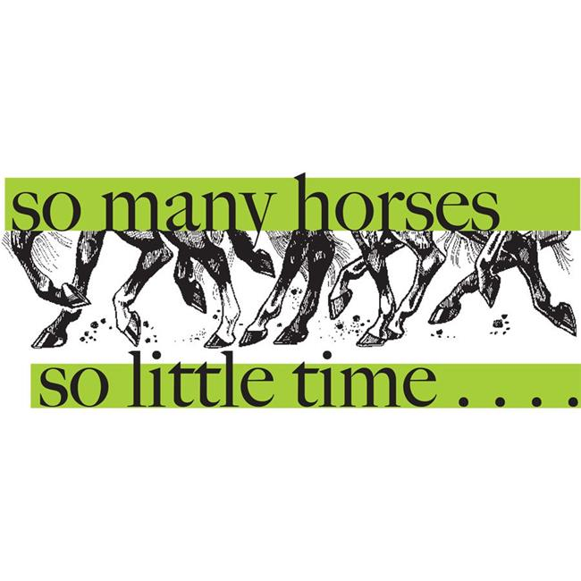 The Sound Equine Q37LWT Horse Humor Tee Shirt So Many Horses So Little Time, White - Large - image 1 de 1