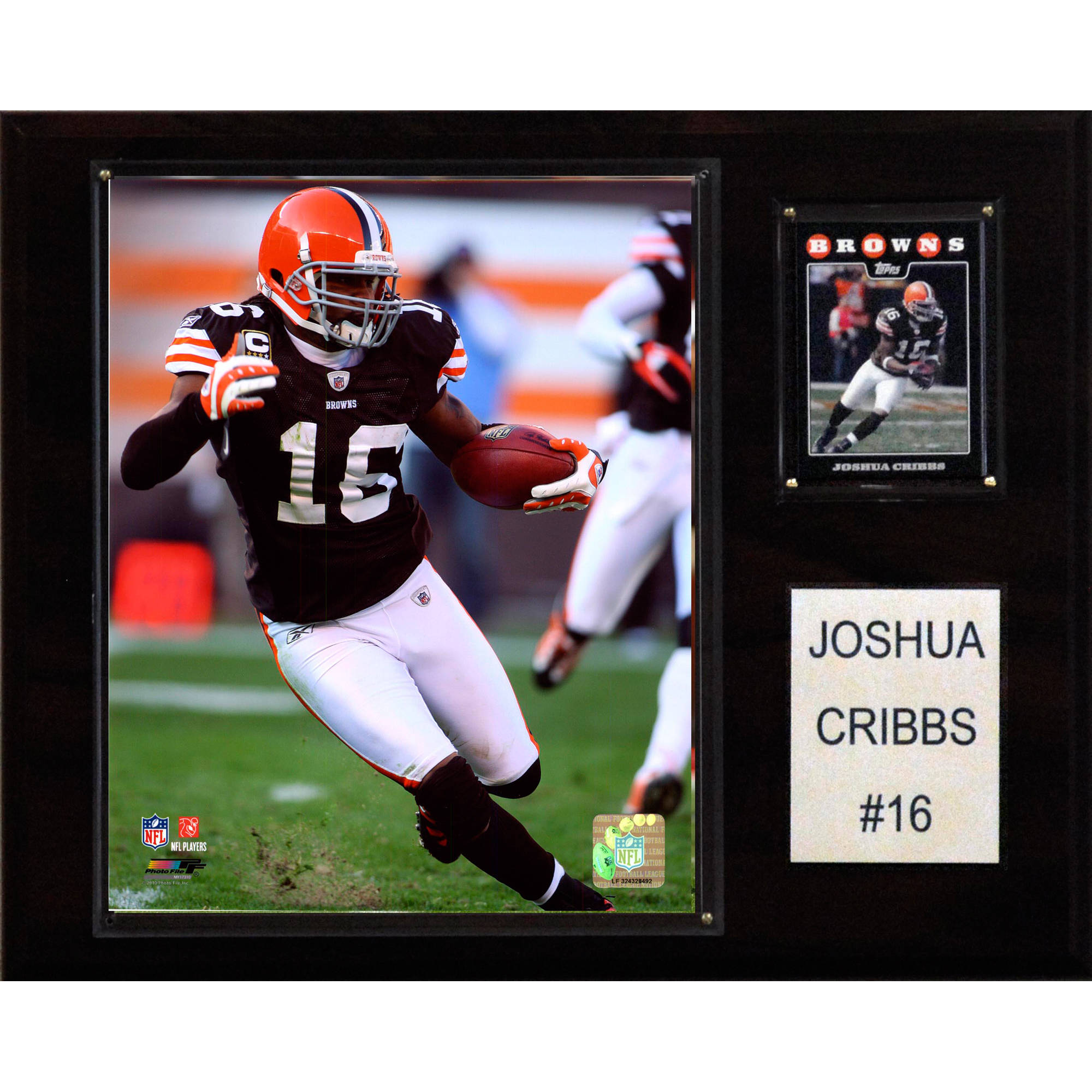 C&I Collectables NFL 12x15 Joshua Cribbs Cleveland Browns Player Plaque