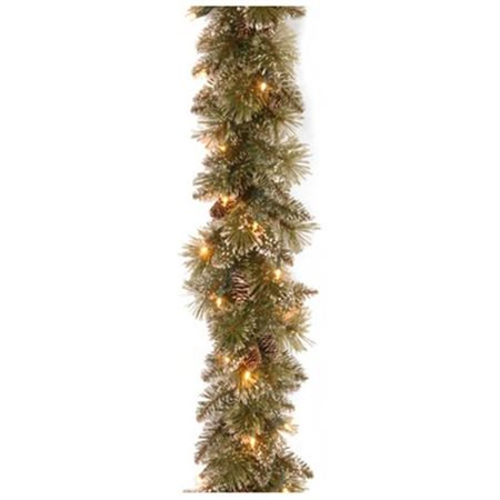 National Tree Glittery Bristle Pine Garland with Battery Operated Warm White LED Lights ()