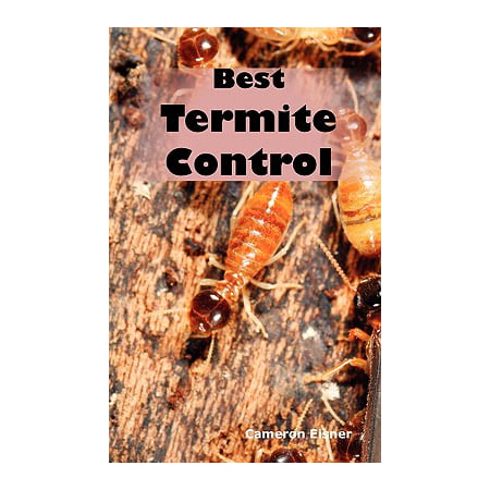 Best Termite Control : All You Need to Know about Termites and How to Get Rid of Them (Best Way To Get Rid Of Blisters On Feet)