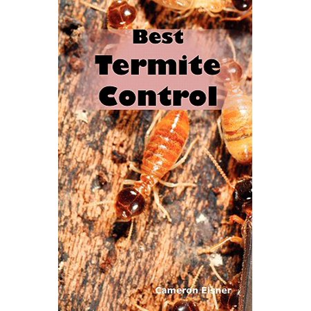 Best Termite Control : All You Need to Know about Termites and How to Get Rid of Them (Best To Get Rid Of Stretch Marks)