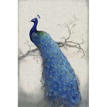 Peacock Blue II Bohemian Bird Print Wall Art By Tim O'toole](Bohemian Wall Art)