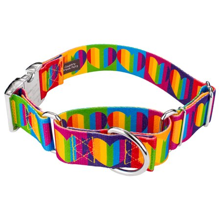 Country Brook Petz | 1 1/2 Inch Rainbow Hearts Martingale with Premium Buckle Dog Collar - Rainbow Dog