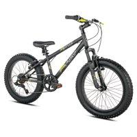 Deals on 20-inch BCA Boys Genesis Rock Blaster Fat Tire Mountain Bike