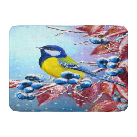 KDAGR Christmas Winter Small Bird of The Tit Sits on Snow Covered Branch Blue Berries Red Leaves Doormat Floor Rug Bath Mat 23.6x15.7 inch (Door Covers For Winter)