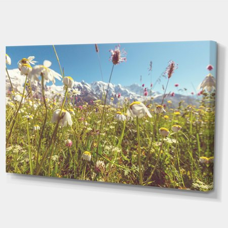 Blooming Mountain Meadow Flowers - Large Flower Canvas Art Print - image 1 de 3