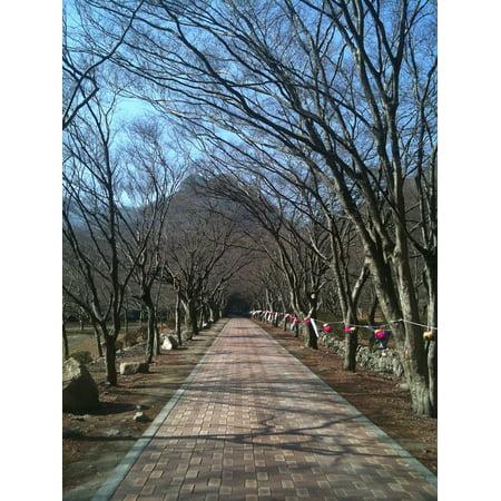 Canvas Print Trails Perimeter Road Republic of Korea Stretched Canvas 10 x (Perimeter 10)