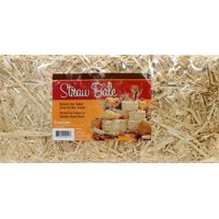 FloraCraft Harvest Straw Bale: 20 x 9 inches