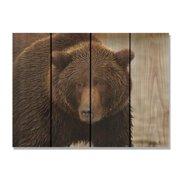 Day Dream HQ BB2216 22 x 16 in. Big Bear Inside & Outside Cedar Wall Art