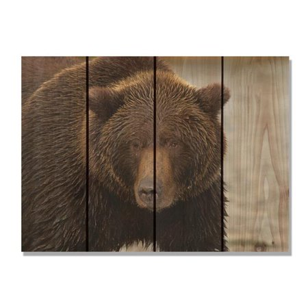 Day Dream HQ BB2216 22 x 16 in. Big Bear Inside & Outside Cedar Wall Art - image 1 de 1