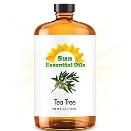 Tea Tree (Mega 16oz) Best Essential Oil