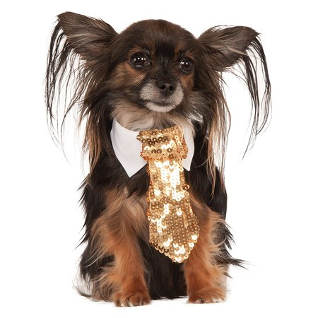 Dog Tie Pet Costume Accessory Gold - Small/Medium - Dog Turkey Costume