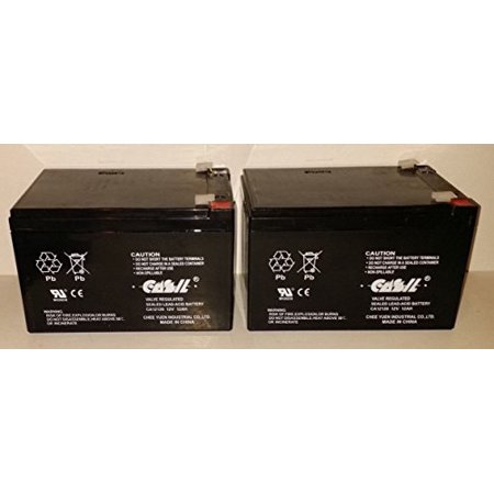 Rechargeable Lead Acid Battery ((2) 12V 12Ah F2 SEALED LEAD ACID DEEP-CYCLE RECHARGEABLE)